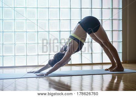 Young woman practicing in a yoga studio indoors. Down ward facing dog, adho mukha svanasana in Sanskrit.