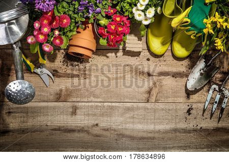 Gardening tools and flower on wooden background