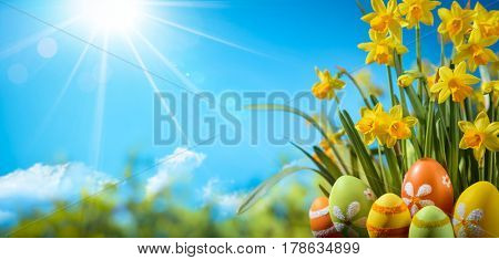 Easter eggs and daffodils,natural background