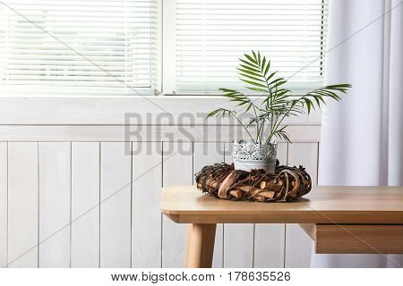 Beautiful home plant in vintage pot on table