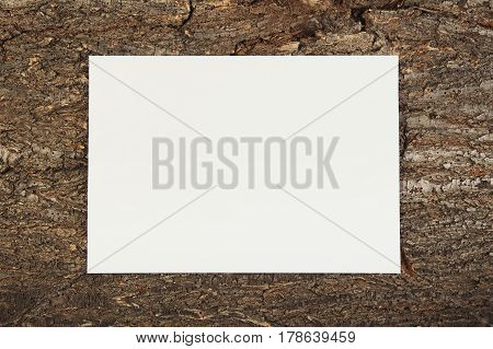 empty paper lie on a wooden background