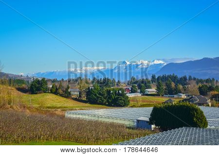 Winter season on fruit farm in a valley. View on a valley with mountains on blue sky background