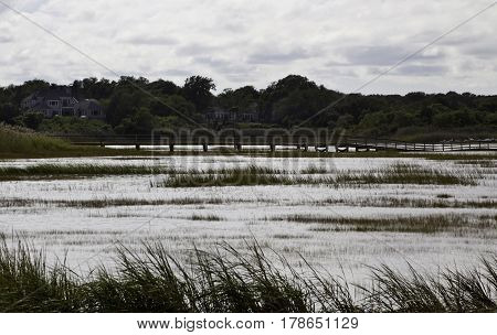 Wide view of a shimmering lake with blowing reeds foliage houses and a walking bridge in the distance off in Cape Cod, Massachusetts on a bright sunny day with blue skies and clouds in September.