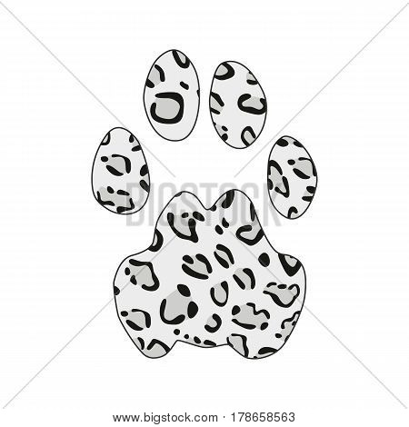 Isolated footprint of snow leopard irbis ounce with skin print on white background.