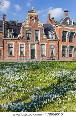 Spring Flowers In Front Of An Old Building In Groningen