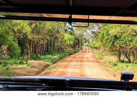 Scenic view from car with of road in Yala National Park, Sri Lanka
