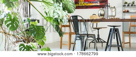 Plants In Dining Hall