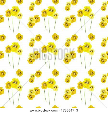 Seamless pattern with yellow flowers pansies on stalks on white background. The light airy texture. Delicate fashionable background for textiles, Wallpaper, and various designs. vector