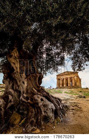 Agrigento, Italy - October 15, 2009: Ancient Greek Landmark In The Valley Of The Temples Outside Agr