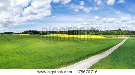 View over a field with way in spring
