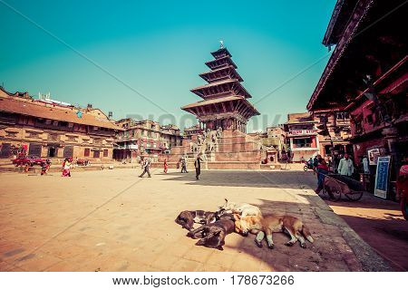 Bhaktapur Nepal - October 8 2011: The famous Durbar Square and sleeping dogs (image taken before the big earthquake)