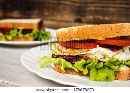 blt sendwich with egg on wooden background