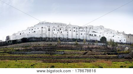White City Of Ostuni Panorama, Italy