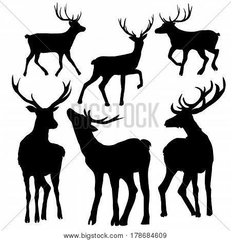 deer silhouette, animal, antlers, black, vector, illustration