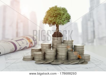 Growth Investment  Concept