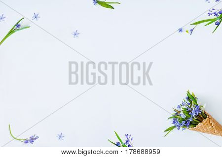 Frame Of Blue Primrose In The Waffle Cone And Single Flowers, Petals And Grean Leafs On The White Ba