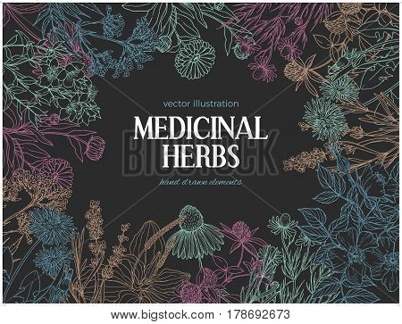 Horizontal dark card template with vintage sketches of medicinal herbs and flowers, place for text, vector illustration. echinacea, chamomile, lavender, calendula, clover, dandelion, st john's wort, plantain, dog rose and valeriana