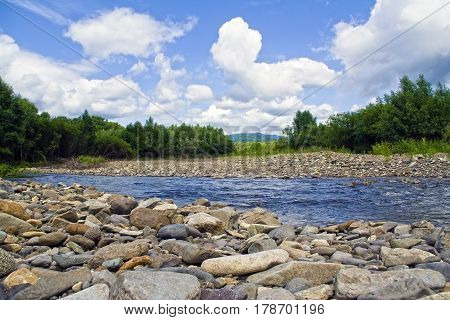 Wildlife landscape with river and forest. The view of nature in the summer in desert edge. Taiga river with rocks.
