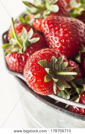 Elevated angled close up view of fresh ripe strawberries with leaves and stalks piled high in a metal pail (bucket).