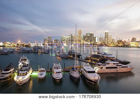 Marina in Miami illuminated at night. Florida United States