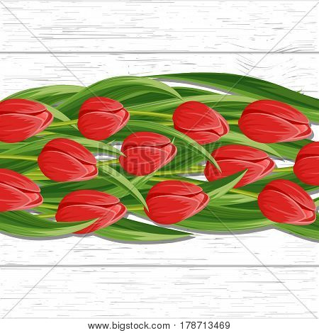 Spring background with red blooming tulip flower on white background vector illustration. Floral decorated spring design for holiday, love celebration, nature feast congratulation card