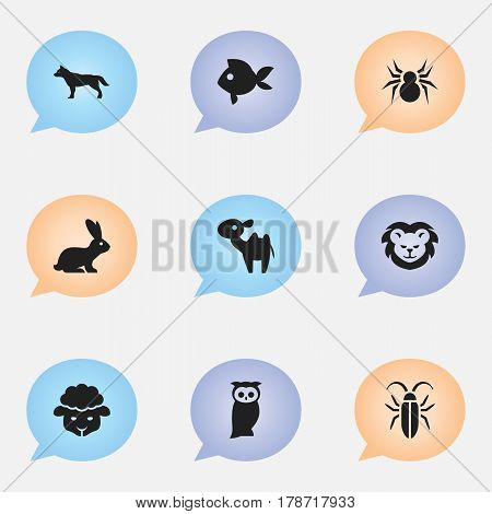 Set Of 9 Editable Zoology Icons. Includes Symbols Such As Dromedary, Owl, Rabbit And More. Can Be Used For Web, Mobile, UI And Infographic Design.