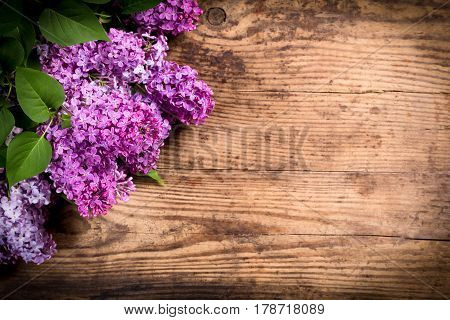 Bunch of lilac flowers in corner of dark brown wood table with empty space for text