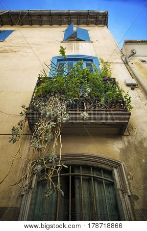 Window with blue shutters and plants in the city center of the Perpignan in southeastern France