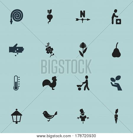 Set Of 16 Editable Agriculture Icons. Includes Symbols Such As Streetlight, Alstroemeria, Plant Protection And More. Can Be Used For Web, Mobile, UI And Infographic Design.