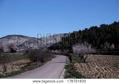 Winding road in scenic landscape of Alicante Spain.