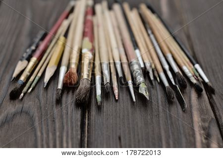 Artistic brushes are fan-shaped on a dark wooden surface