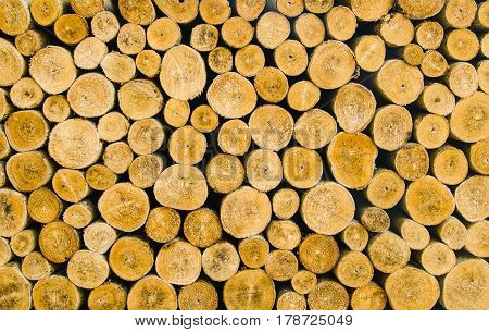 Pile of wood logs for winter, wooden background,stack of wood background