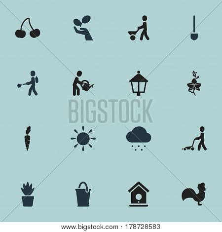 Set Of 16 Editable Plant Icons. Includes Symbols Such As Streetlight, Spade, Water The Flower And More. Can Be Used For Web, Mobile, UI And Infographic Design.