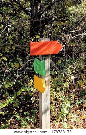 Wooden post at the entrance to a group of hiking trails showing directions to the red, yellow, and green pathways.
