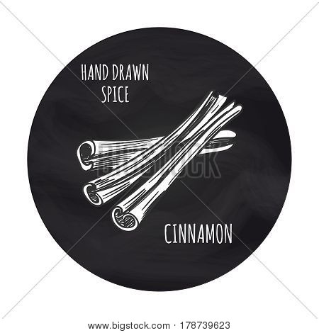 Hand drawn spice cinnamon in blackboard round. Vector cinnamon sketch icon design
