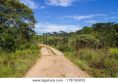 Trail In Itaimbezinho Canyon
