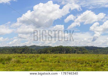 Farm Field At Itaimbezinho Canyon