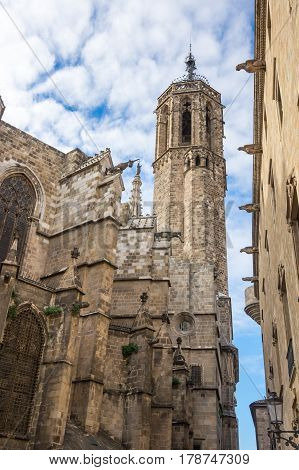 The Cathedral of the Holy Cross and Saint Eulalia also known as Barcelona Cathedral in gothic quarter of Barcelona Spain