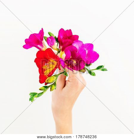 Freesia flowers in hand isolated on white background. Flat lay, top view. Floral background.
