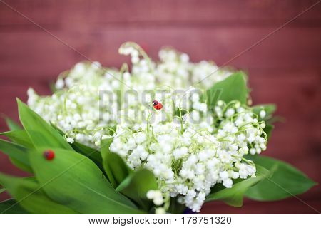 Lily of the valley on wooden background. Lily of the valley bouquet. Lily of the valley with copy space.