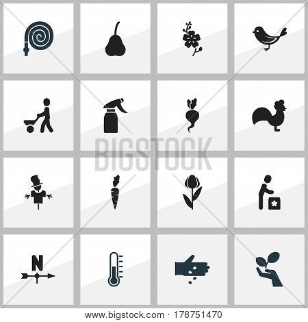 Set Of 16 Editable Farm Icons. Includes Symbols Such As Rooster, Duchess, Man With Trolley And More. Can Be Used For Web, Mobile, UI And Infographic Design.