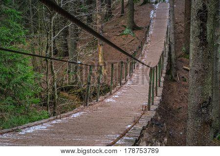 Hanging bridge. Suspension bridge, bridge through the forest.