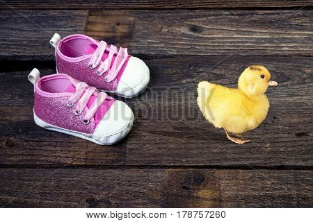 Pink baby shoes with cute baby ducky.