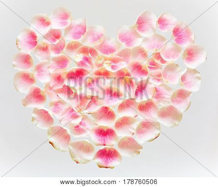 Symbol of love - heart lined with tender rose petals on a white background.