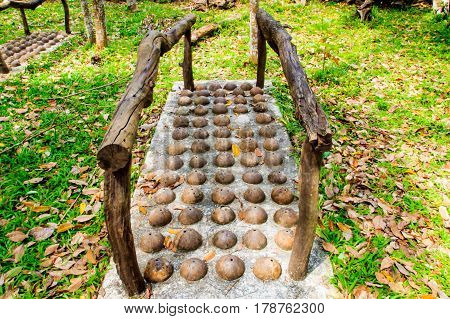 Thai Traditional Coconut shell modify for foot massage in public park.