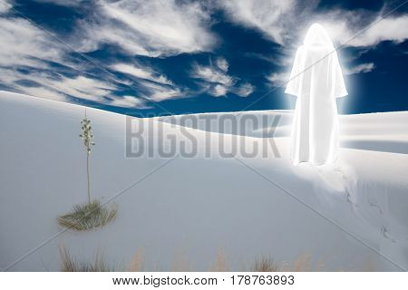 Figure in shining cloak stands at the desert      3D Rendering