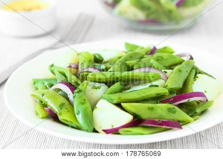 Green bean potato and red onion salad with parsley hollandaise sauce in the back photographed with natural light (Selective Focus Focus in the middle of the salad)