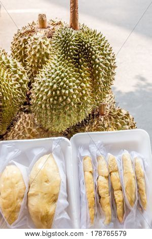 Typical Durian Fruit that can be found in Thailand