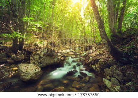 Fairy mountain forest at the river with colorful sun rays in spring morning. Fantastic landscape with trees, green leaves, stones and blurred water at sunrise. Magic woods with yellow sunlight. Nature