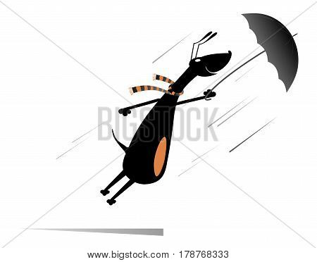 Windy day. Dog holding an umbrella gone with the wind isolated